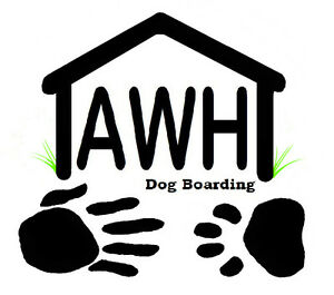 Dog Boarding, Pet, Kennels, Dog, Home, Dogs, Boarding