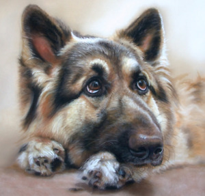 Pet Art- Oil Portraits from your Photos