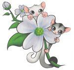 Possums Treasure Tree