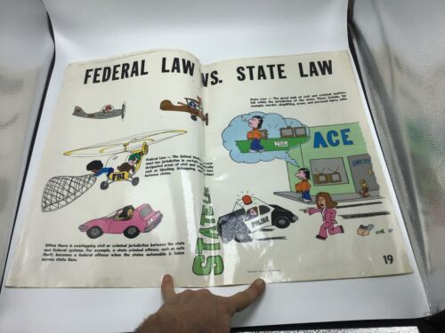 Original LAW Poster 1977 justice publications -- FEDERAL LAW VS. STATE LAW --
