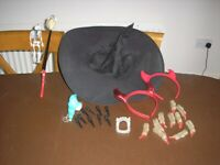 Collection of Halloween items from smoke & pet free home. Excellent condition. £3