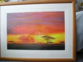 African Themed Pictures for sale