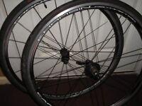 campagnolo khamsin wheels