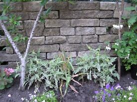 Bradstone walling blocks (garden walling)