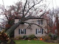 Storm damage repairs