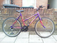 "Ladies 26"" Wheels Mountain Bike"