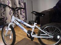 British Eagle children's bike (for boy or girl)