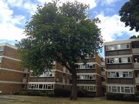 Teddington prime location bright and airy 2 double bedroom flat to rent