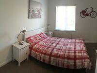 Beautiful ensuite room   No deposit