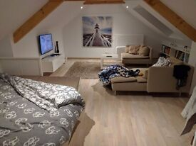 1 Bed Flat / Studio WANTED - Professional Couple