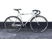 Fuji single speed freewheel