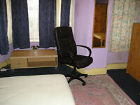 Very Double Large room in Mutley