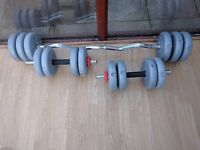 Dumbell and ez barbell + 35kg weights
