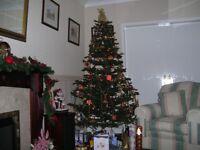 Artificial Life Like Christmas Tree
