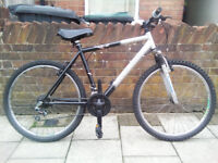 "Adult 26"" Wheels Mountain Bike"