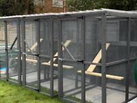 Catio / Cat Enclosures