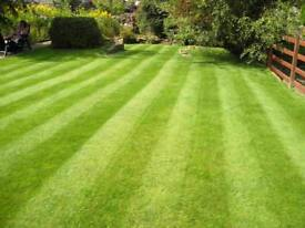 Grass cutting rosebud garden and fencing service