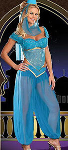 GENIE Jasmine Aladdin Princess Adult Costume Fancy Dress Arabian Belly Dancer