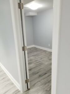 Walkout basement with seperate entrance for rent immediately