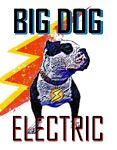BIG DOG Electric