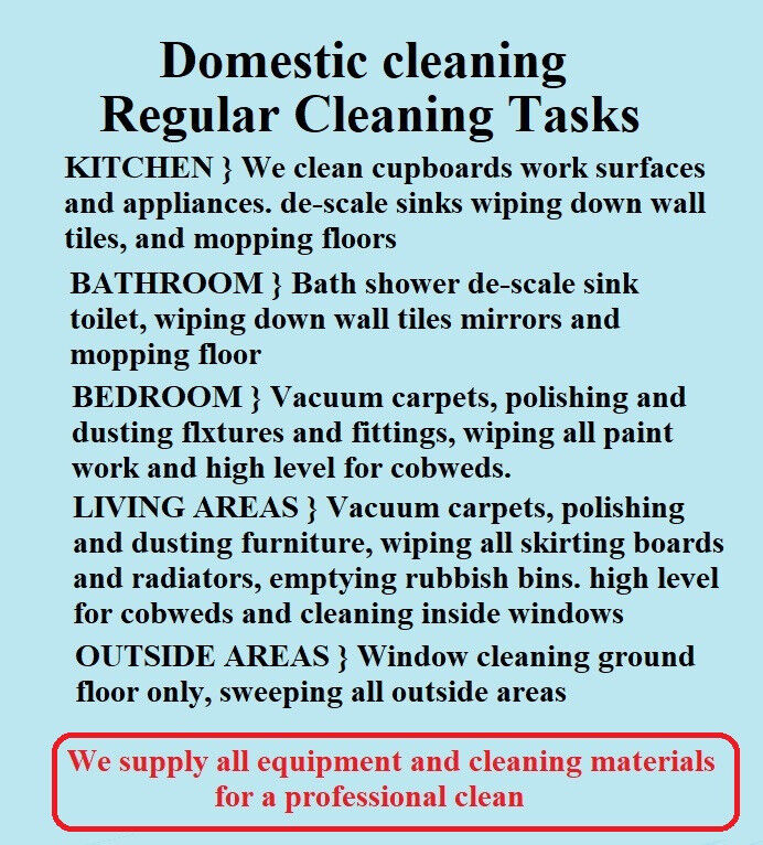 what is domestic cleaning