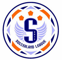 CO-ED AND MEN'S INDOOR SOCCER LEAGUE