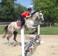 Book Summer Camp Now And Get One Free Riding Lesson!