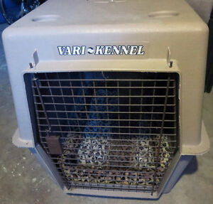 "Medium - Large  Dog Cage / Carrier 36""L x 24""W x 26""H Belleville Belleville Area image 2"