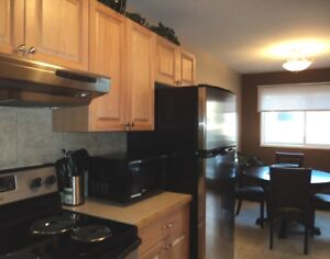 Full Furnished - All Inclusive 1 Bedroom / 1 Bath