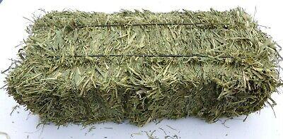 2020 Hay, Fresh Cut Prairie Grass for RABBITS GUINEA PIGS CHINCHILLAS 4 lb Bales