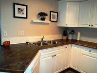 TWO BEDROOM CONDO MOVE IN READY-OCT 1