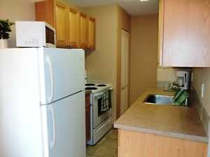 Furnished 1 Bdrm Suite - Available Immediately