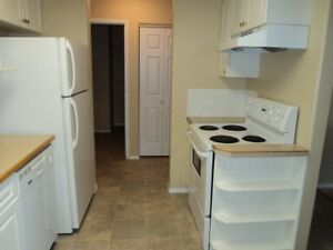 Regency Plaza - Furnished 1 Bed