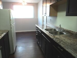 Recently Renovated 2 Bedroom Suite