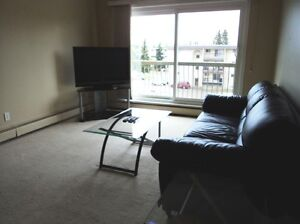 ONE BEDROOM FURNISHED SUITE AUG 26