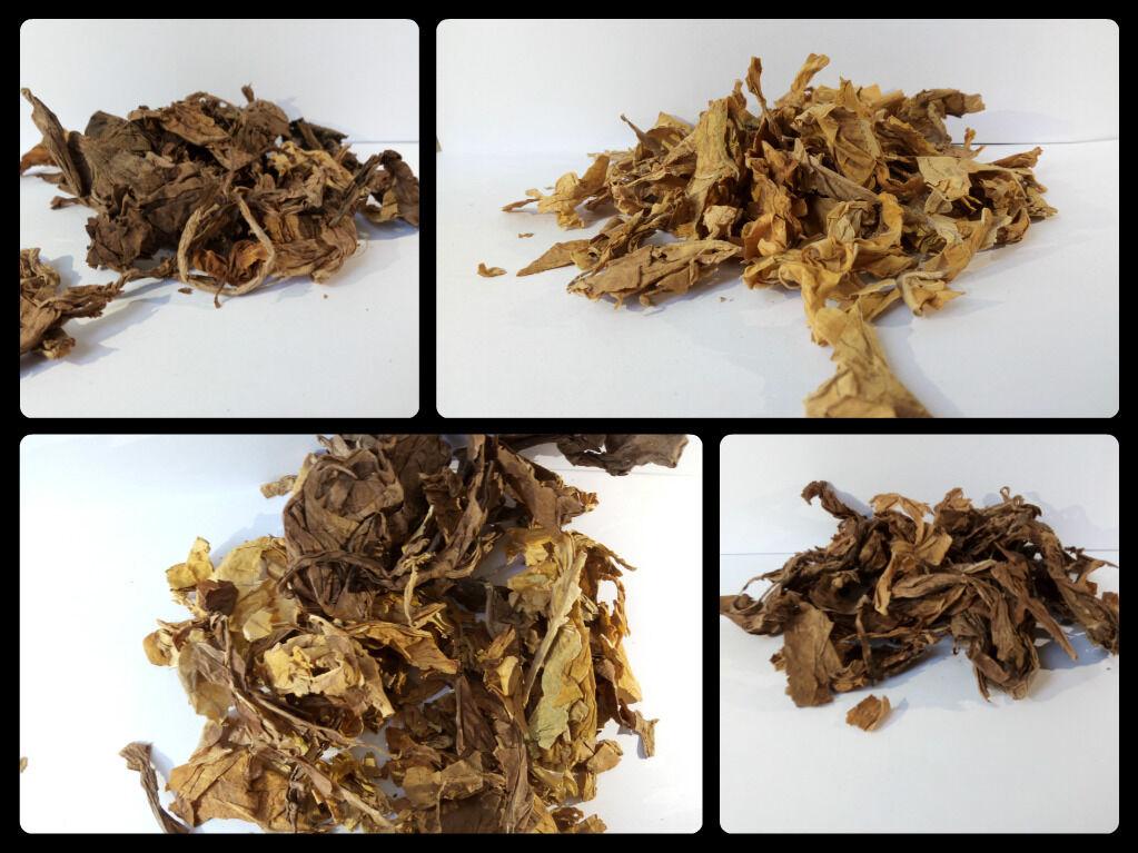 Virginia Strips American Blend Turkey Medium Blend Rohtabak Blätter Naturtabak