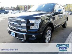 2015 Ford F-150 Platinum 3.5l v6 Ecoboost, fully loaded!