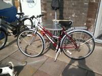 Lady's enterprise pro bike