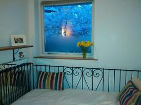 AMAZING SINGLE ROOM IN A LOVELY APARTMENT IN CROUCH END.