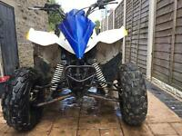 Polaris Phoenix 200cc swaps for crosser