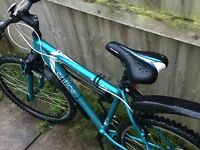 Mountain bike for sale - mint condition