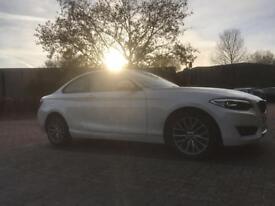BMW | 2 Series Coupe | Alpine & Dakota Brown | DOB-10.09.2015 | Premium Add On (s) | Model Deletion