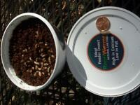 Live worms, Crickets for SALE by The Worm Lady. SUPER Specials