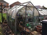 Greenhouse 8 x 6ft