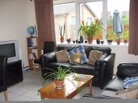 Harborne. Excellent rooms available in a shared house