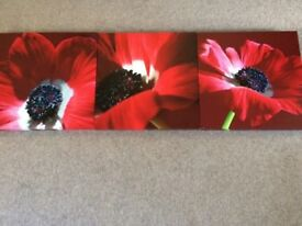 Trio of Next poppy canvas pictures