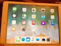 IPAD AIR, 16GB, Wi-Fi & CELLULAR, RETINA DISPLAY