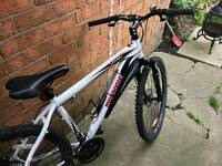 Mongoose vanish bike