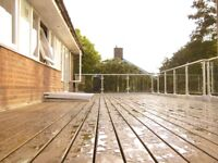 Cedar Decking Boards and Support Joists - approx. 35 sq/m