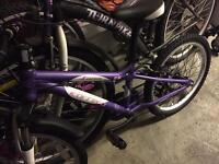 LUNA CARRERA 20'' girls bike